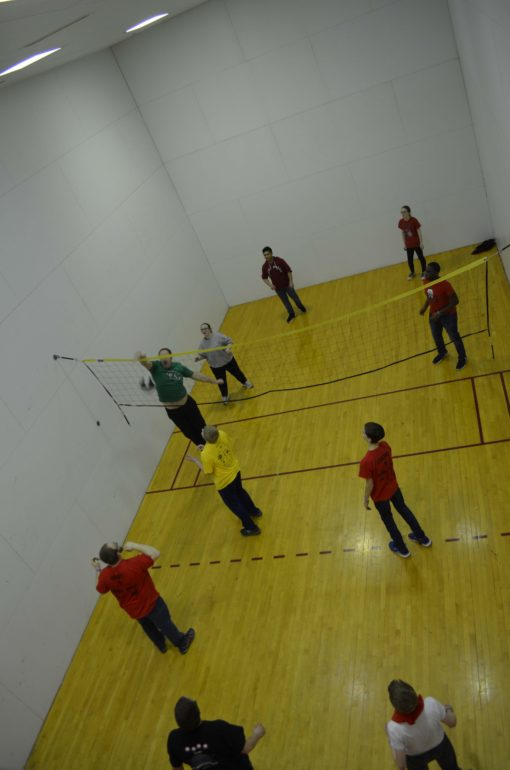 Participants playing volley ball.